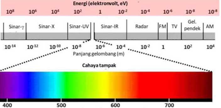 Spektrum cahaya untuk tanaman aquascape